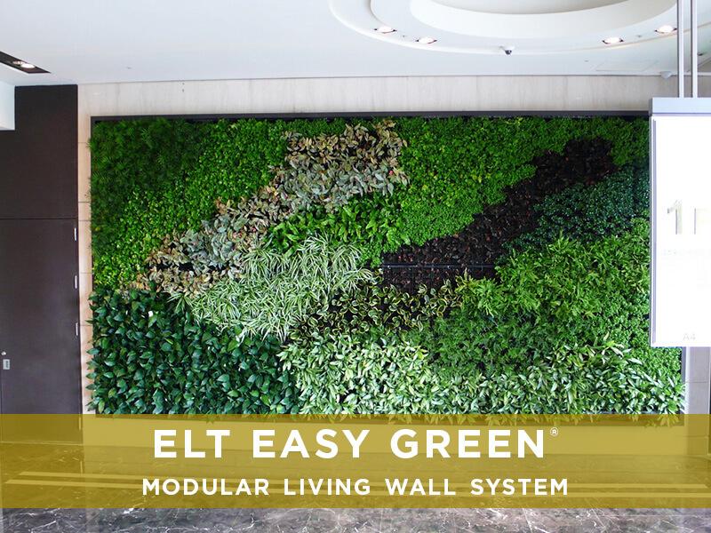 ELT EASY GREEN VIDEOS