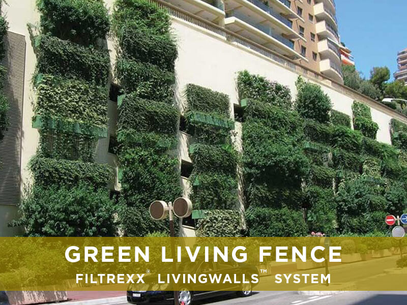 Green Living Concept Infographic