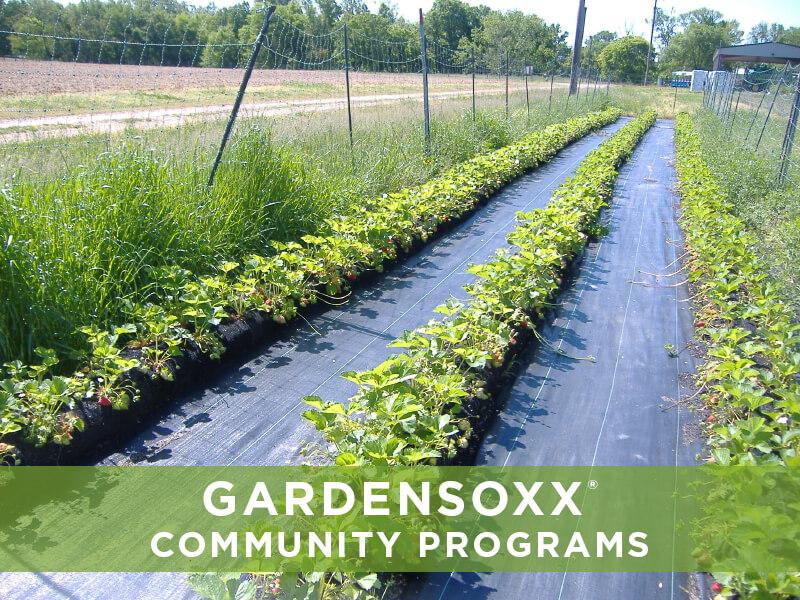 Filtrexx GardenSoxx GardenSoxx Gallery GardenSoxx in Use