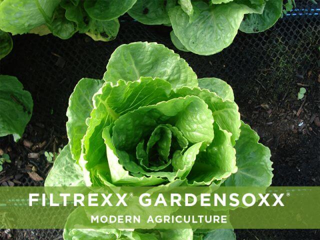 Filtrexx GardenSoxx