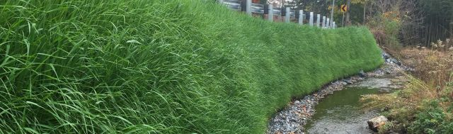 Filtrexx GreenLoxx Vegetated Wall and Slope Systems