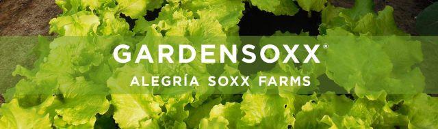 Alegria Soxx Farms